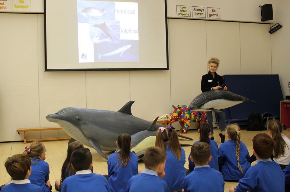 Having fin-tastic fun in South Coast schools!